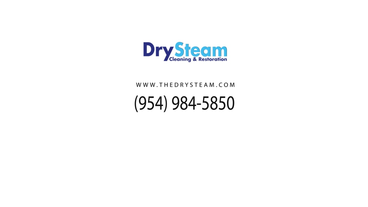 Drysteam Commercial